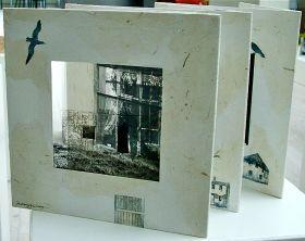 Gægjur (2009)