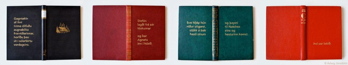 Lokaorðin | The last words – The final lines (2014)