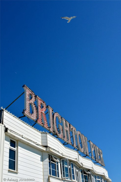 Brighton21AslaugJ